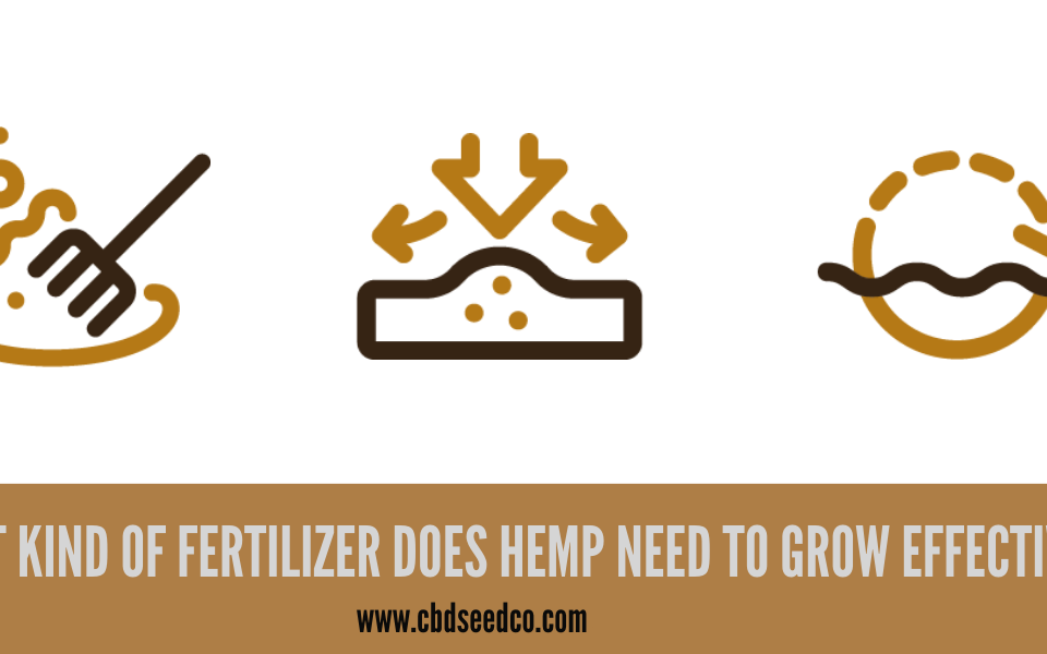 hemp fertilizers
