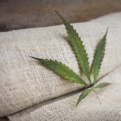 Fabric made from hemp