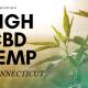 growing high cbd hemp in conneticut