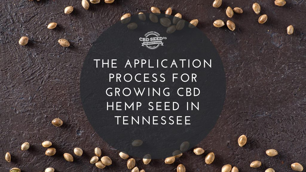 the application process for growing cbd hemp seed in tennessee