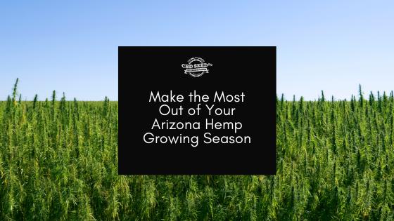 cbd seed arizona, make the most out of your arizona growing season