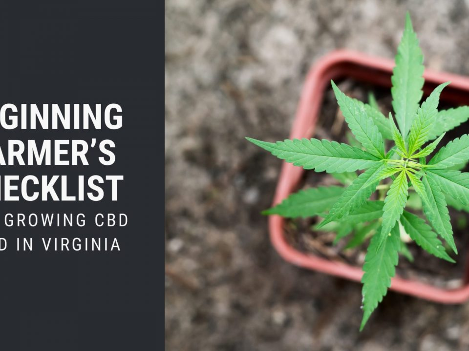 checklist growing cbd seed virgina