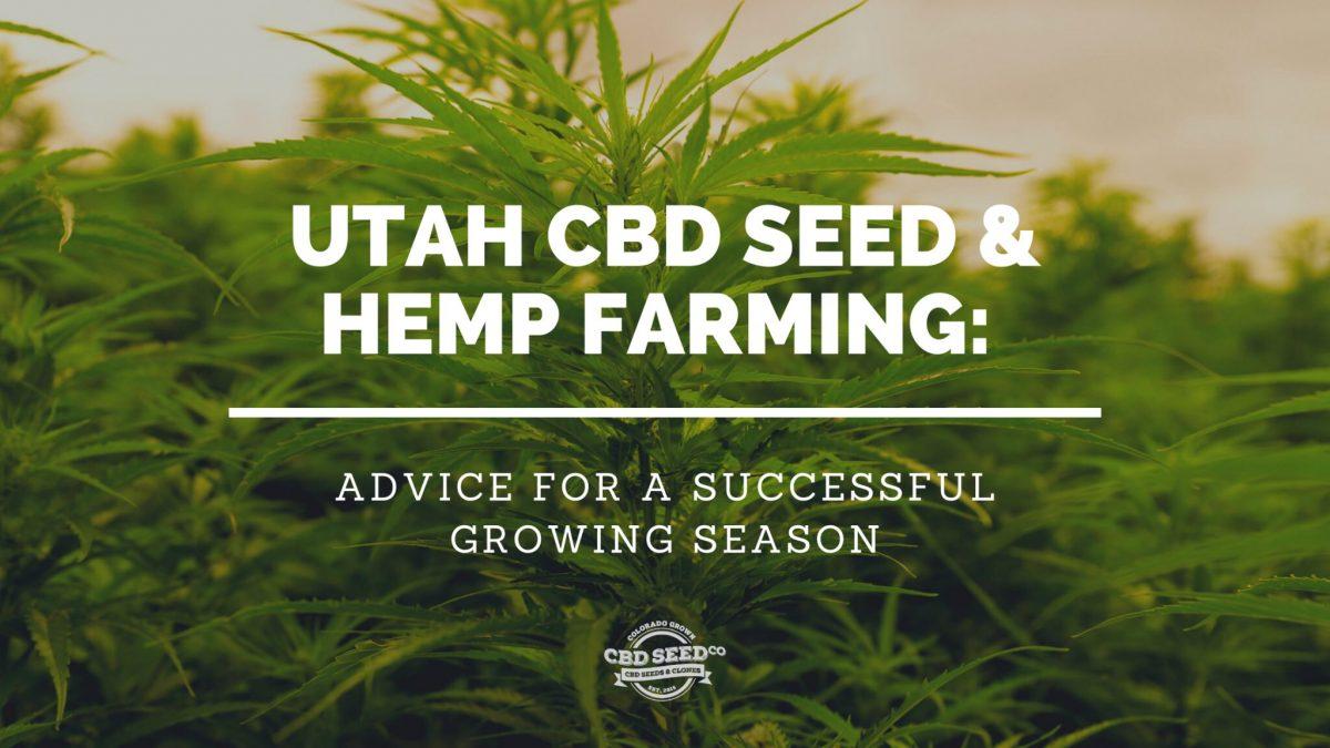 utah cbd seed and hemp farming