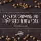 faq growing hemp seed new york
