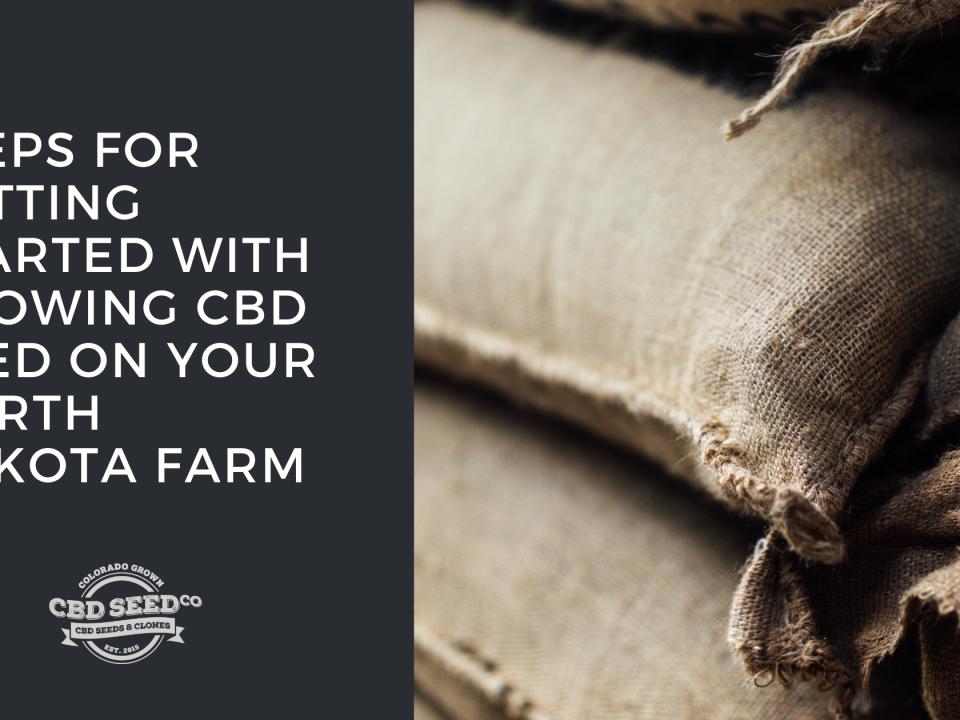 get started growing hemp seed north dakota