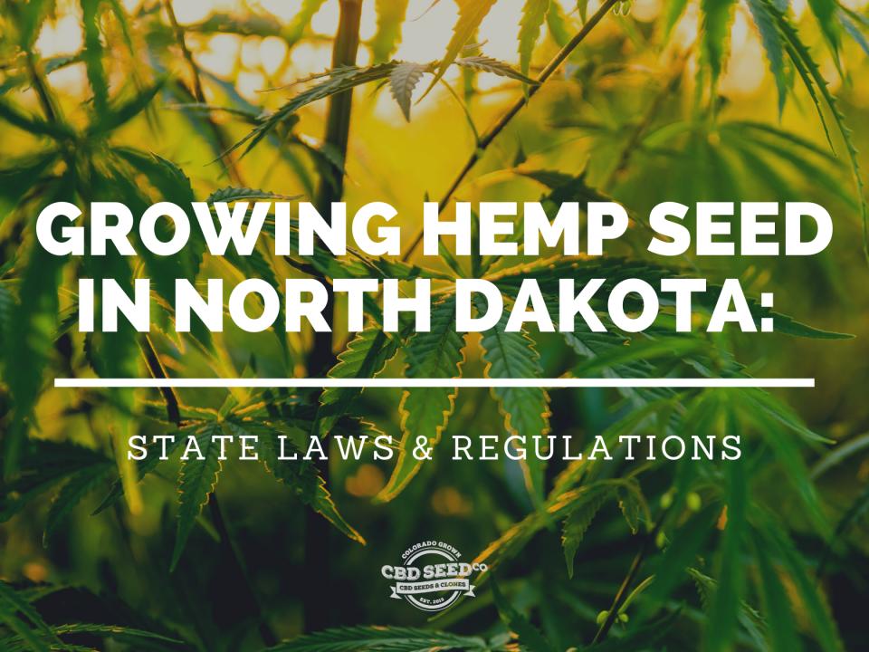 growing cbd hemp seed north dakota laws