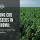 growing cbd seed okalhoma hemp laws