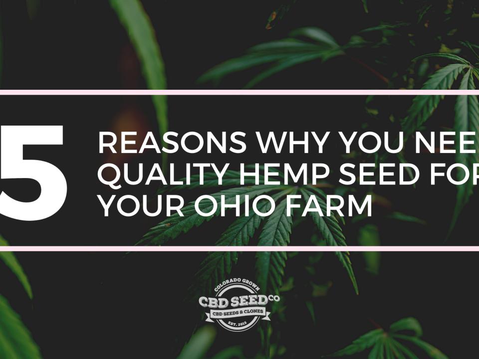 quality hemp seed ohio farm