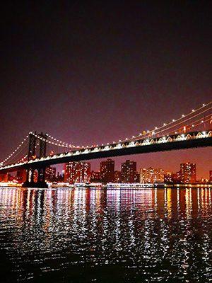 cbd-seed-co-where-we-grow-news-new-york