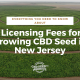 licensing fees growing cbd seed new jersey