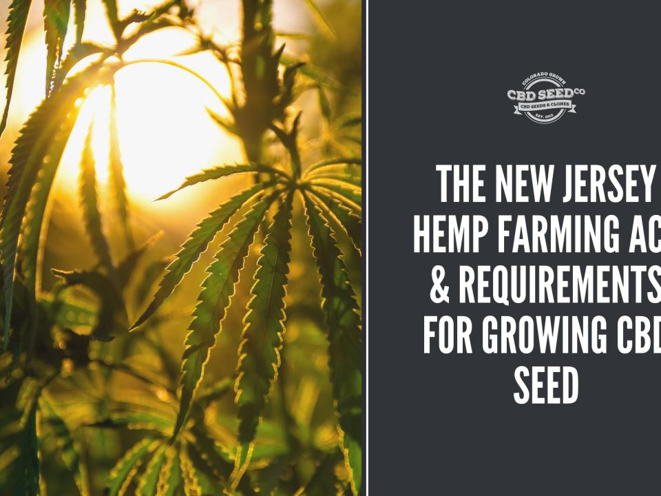new jersey hemp farming act growing cbd seed