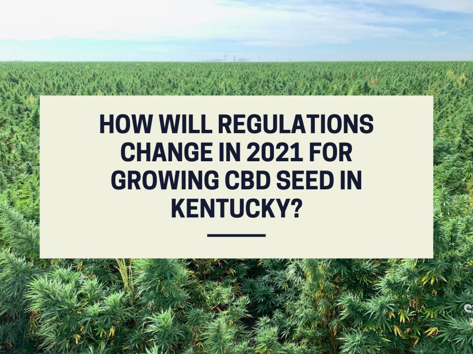 regulations growing cbd seed kentucky 2021