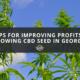 cbd seed georgia