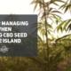cbd seed rhode island