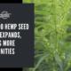 colorado hemp seed market