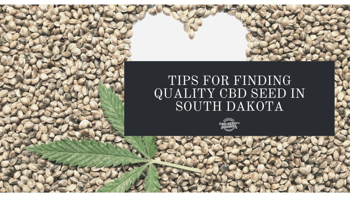 cbd seed south dakota