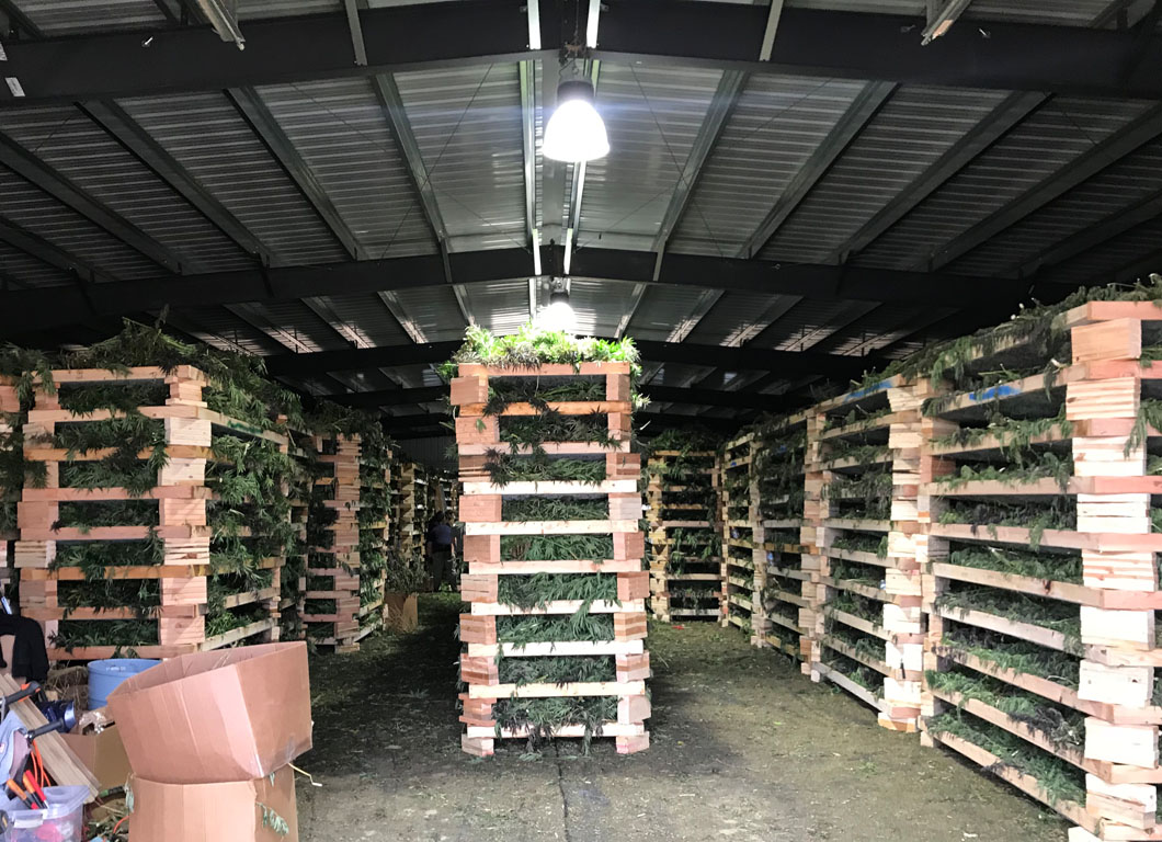 HEMP FARMING RESOURCES
