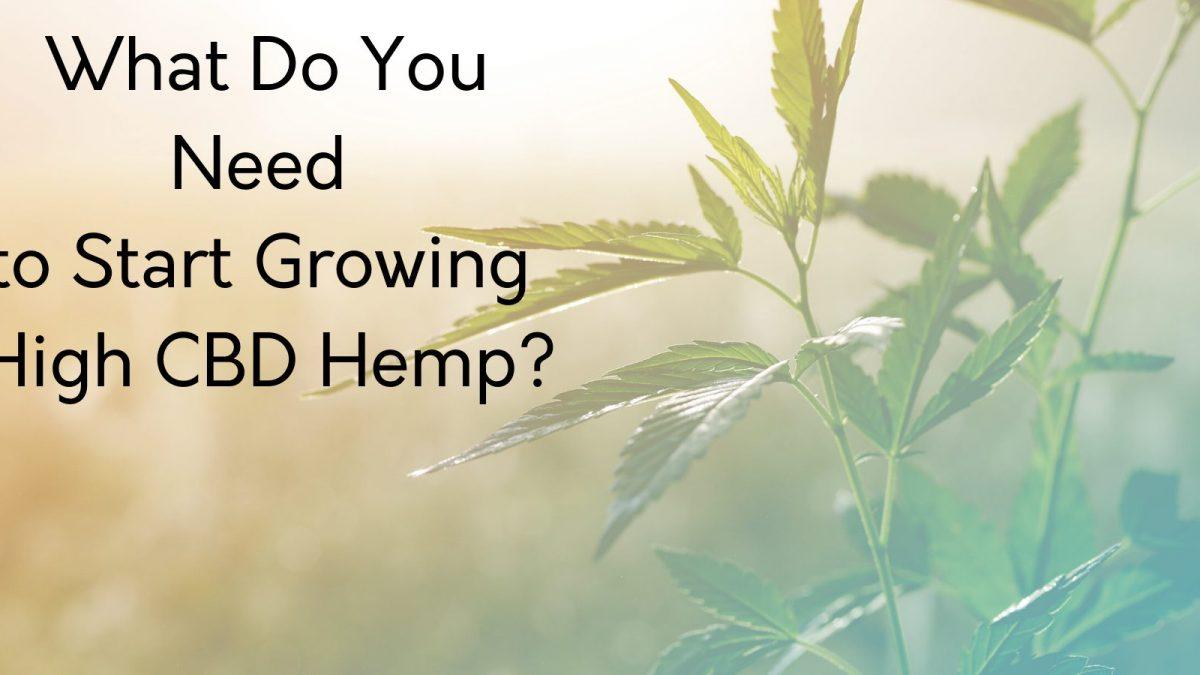 what do you need to start growing hemp