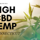 growing high cbd hemp in conneticut