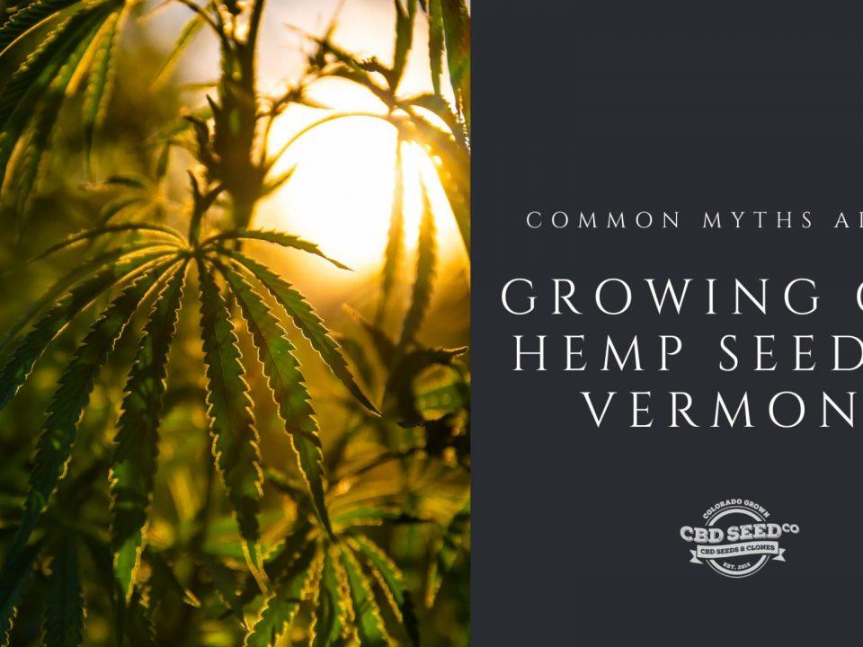 myths growing cbd hemp seed vermont