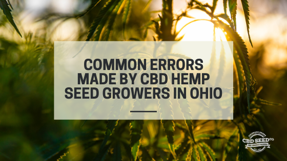 errors cbd hemp seed ohio