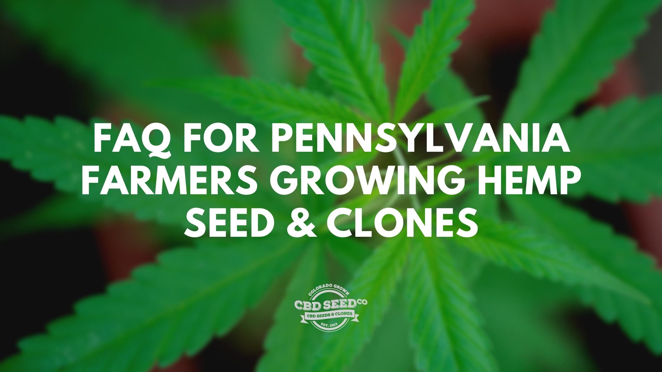 Faq For Pennsylvania Farmers Growing Hemp Seed Clones Cbd Seed Co