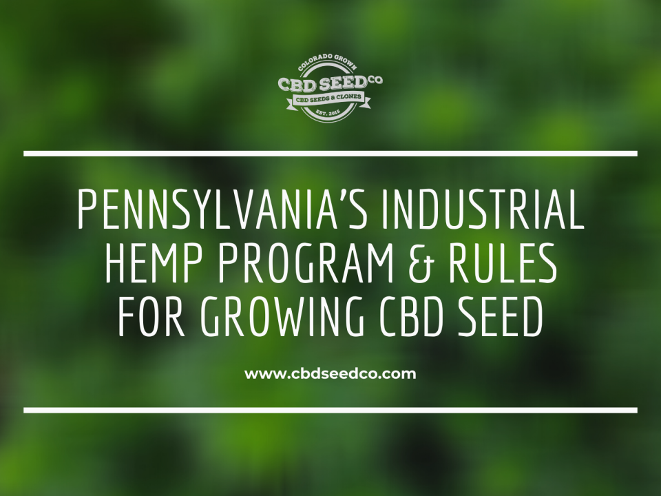 pennsylvania industrial hemp program growing cbd seed