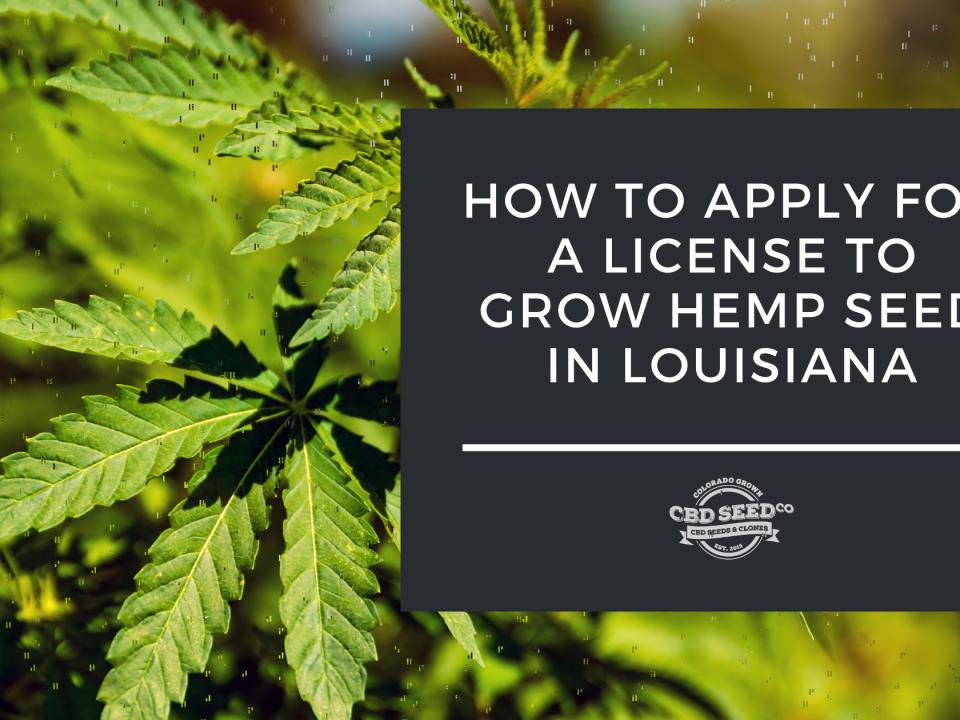 apply license grow hemp louisiana