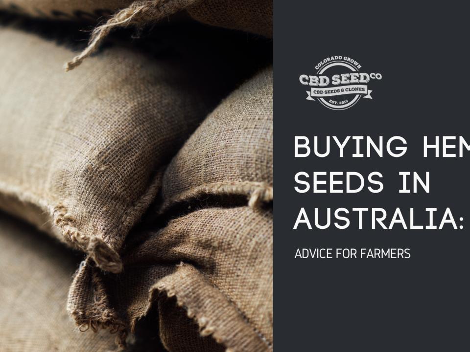 buying hemp seed australia