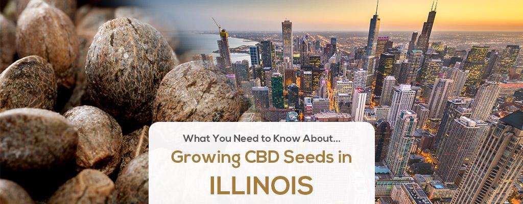 cbd seed illinois