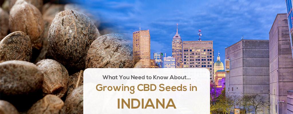 cbd seed indiana