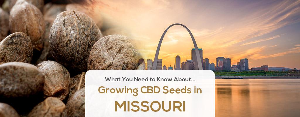 cbd seed missouri