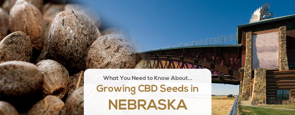 cbd seed nebraska
