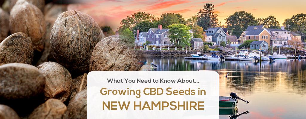 cbd seed new hampshire