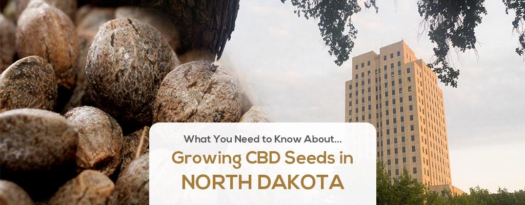 cbd seed north dakota