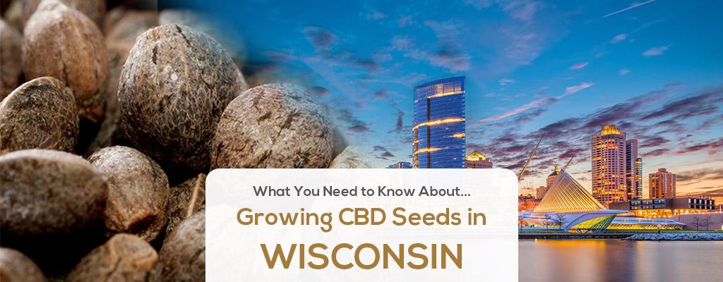 cbd seed wisconsin