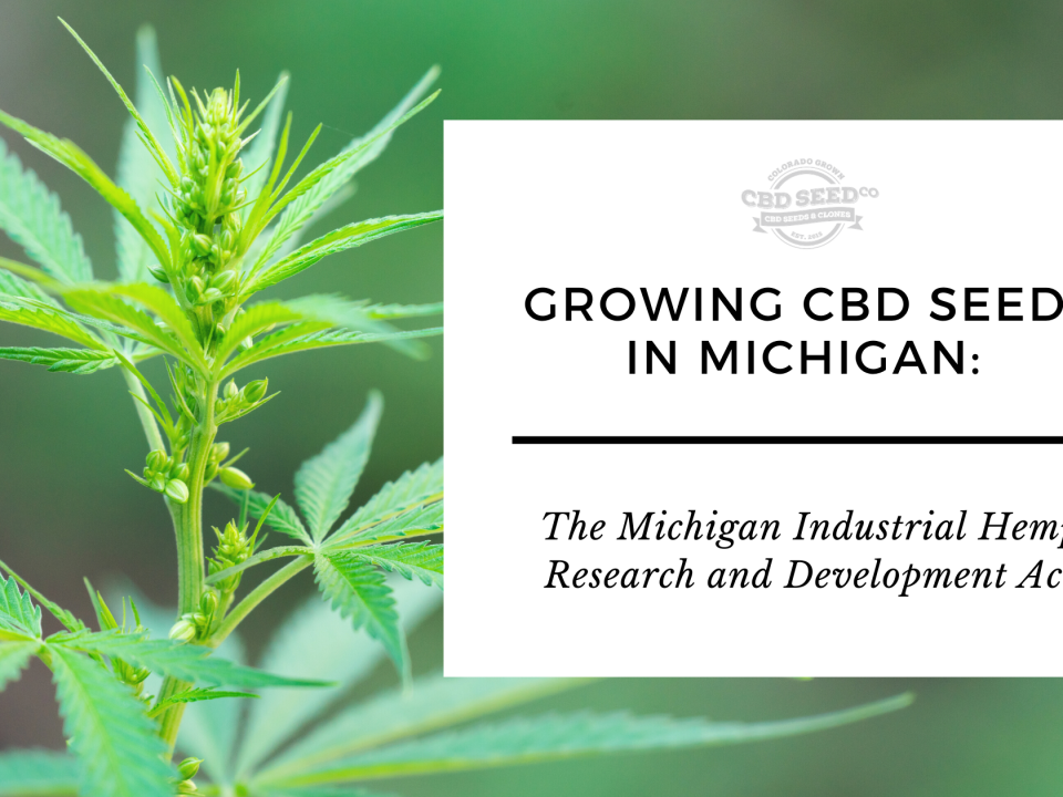 growing cbd hemp seed michigan laws