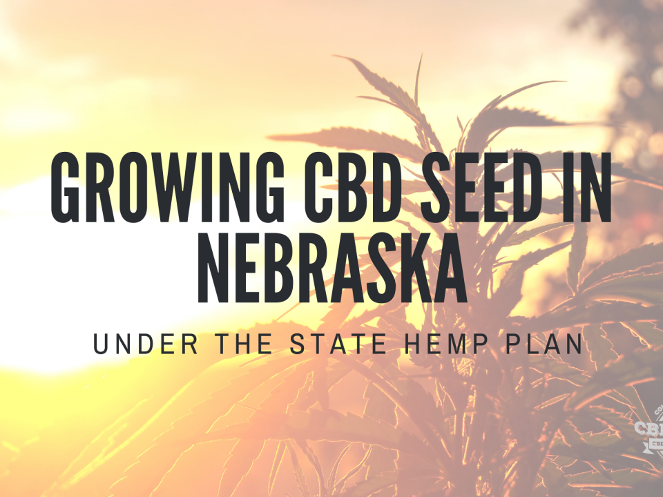 growing cbd seed nebraska state hemp plan