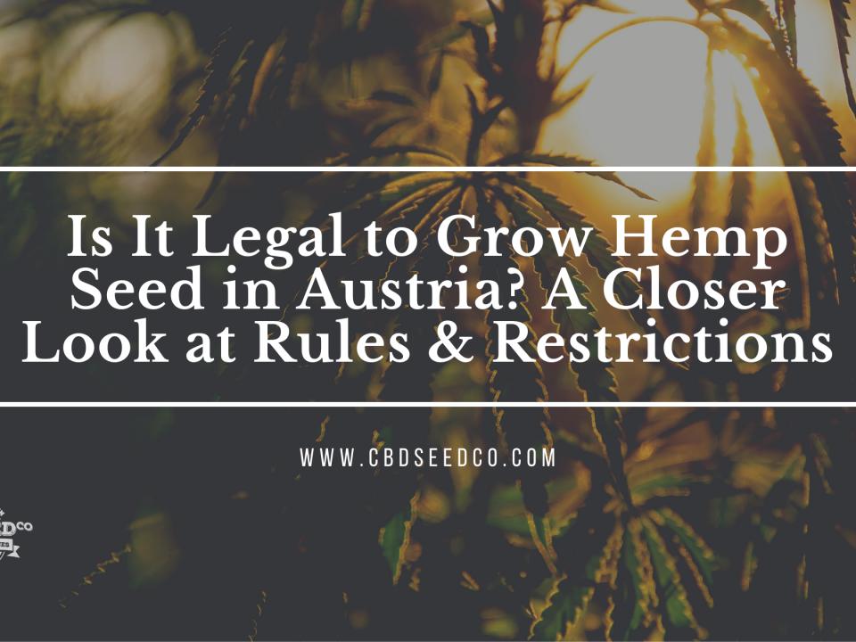 legal grow hemp seed austria