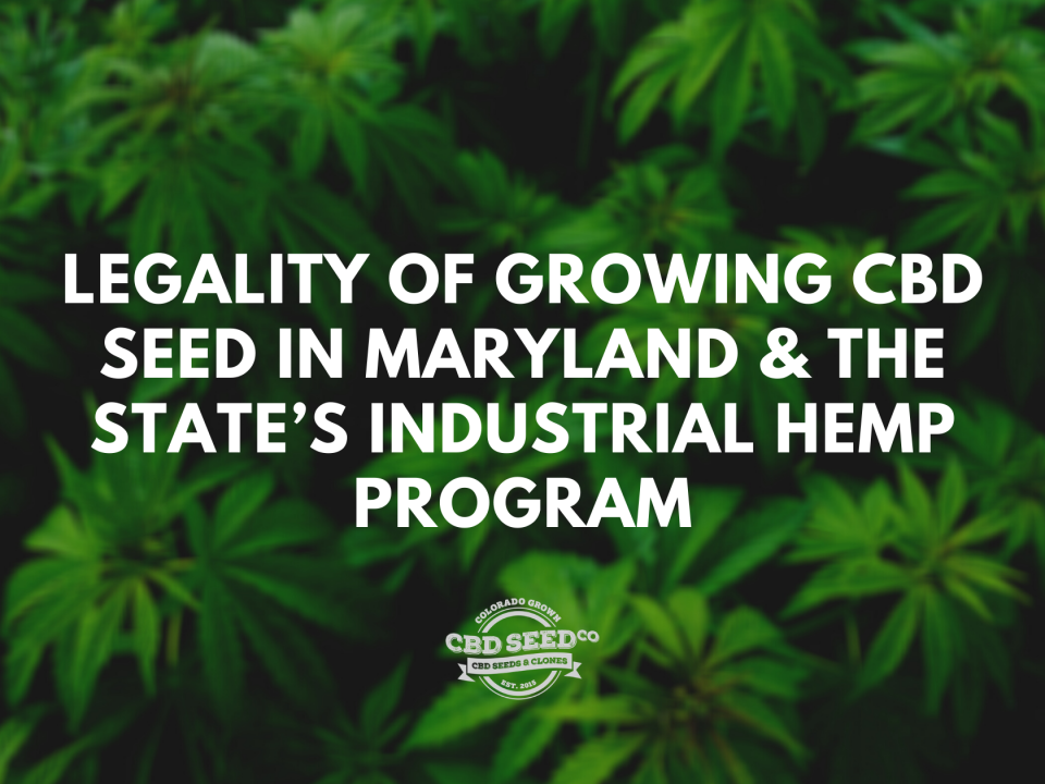 legality growing cbd seed maryland hemp program