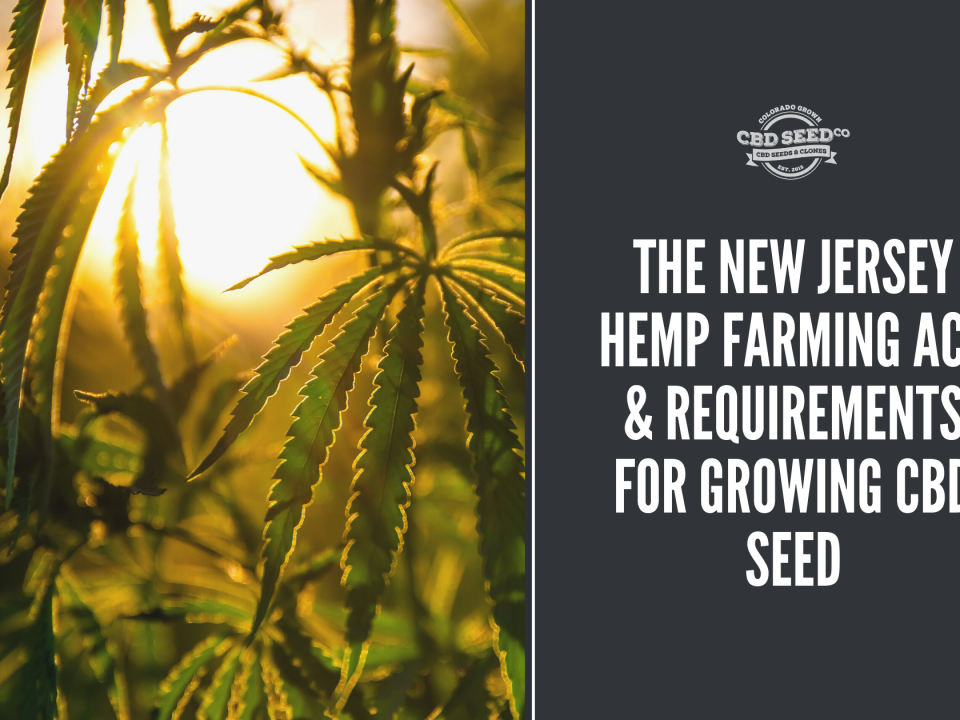 new jersey hemp farming act growing cbd seed