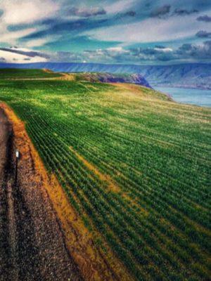 cbd hemp biomass transportation nebraska